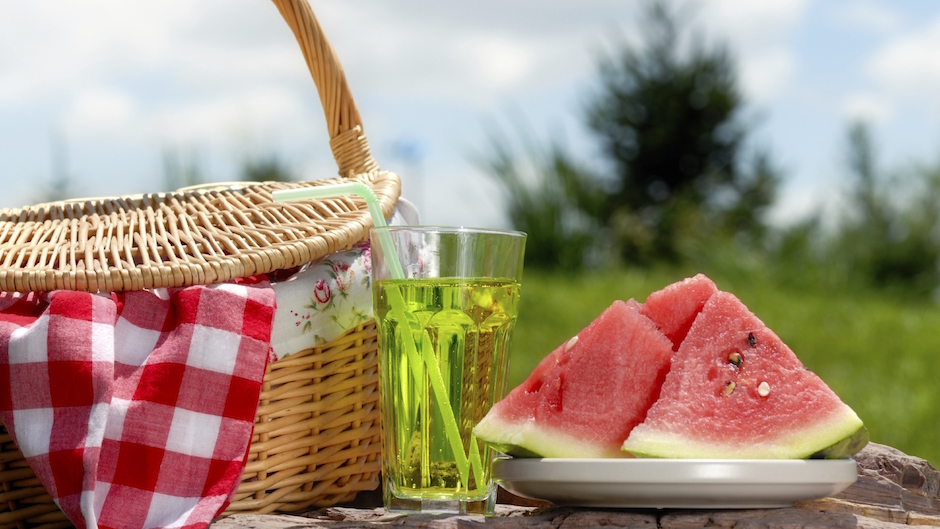 Planning the Perfect Picnic Checklist - Pizazz